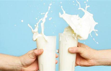 חלב ומוצריו – יתרונות בריאותיים